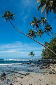 Fiji 2015-1448