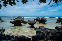 Fiji 2015-1483