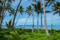 Fiji 2015-1495