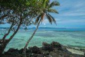 Fiji 2015-1499