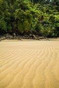South Island-02438