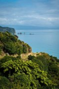 South Island-02849